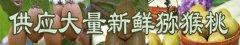 眉县翠香猕猴桃的特性是