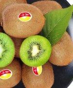 绿心猕猴桃和黄心猕猴桃