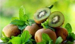 猕猴桃最好吃的做法-