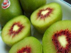 新西兰猕猴桃产业分析及育种策略