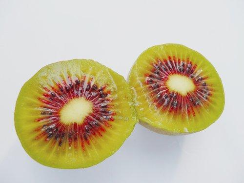红阳猕猴桃生产区