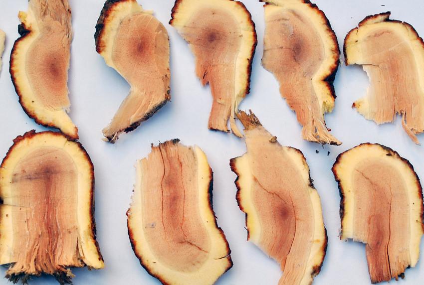 猕猴桃对多种癌症治疗的科学依据