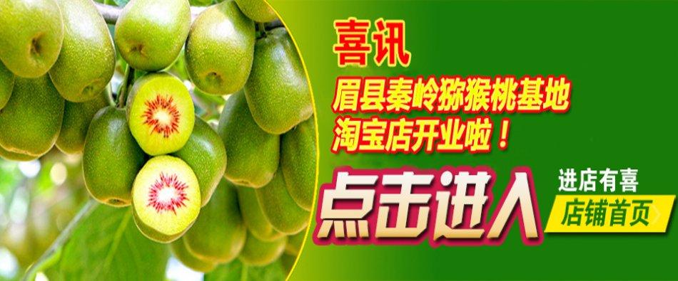 眉县红心红阳猕猴桃上市了,最新价格快来看!