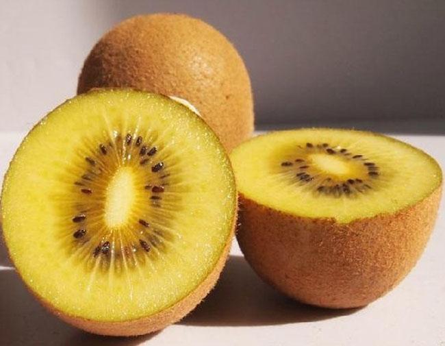 黄金果猕猴桃果