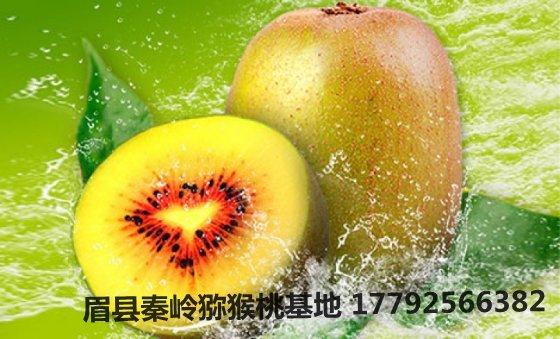 奇异果的7大优点,快点把奇异果加入健康饮食套餐!