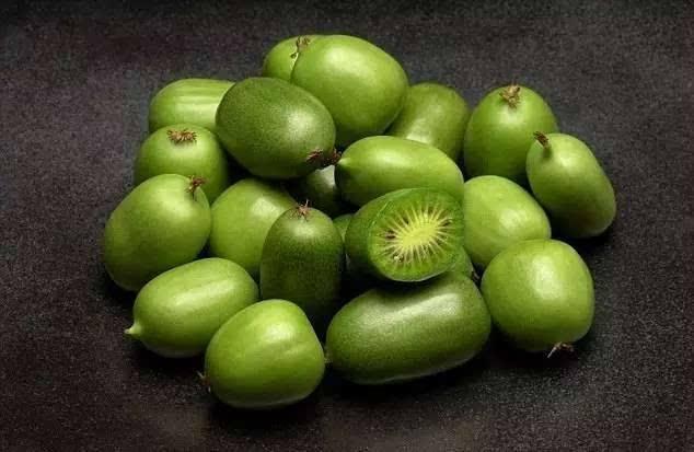 100多块一斤!软枣猕猴桃,曾经躲在丹东深山里的宝