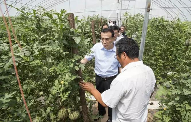 7月10日上午,中共中央政治局常委、国务院总理李克强来杨凌视察调研