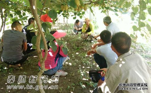 科协搭建好合作平台 助推猕猴桃产业发展