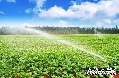 未来的农民种地,要么高效,要么高价,要么离开!