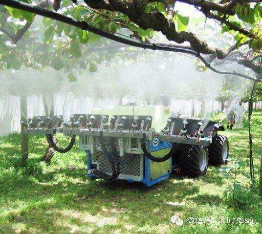 微信小文一片,关于新西兰猕猴桃种植技术有多牛