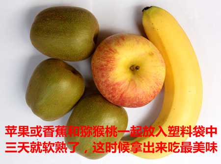 红心猕猴桃营养丰富如何选择