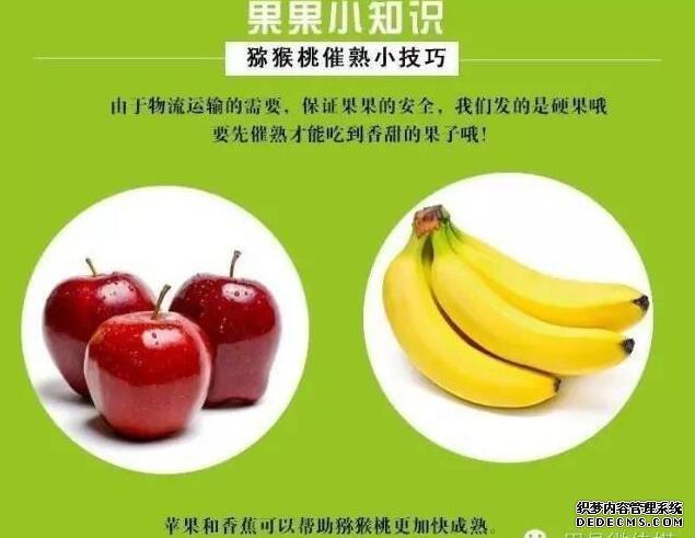 """猕猴桃如何""""催熟""""与""""保存"""",小妙招教你吃新鲜水果!"""