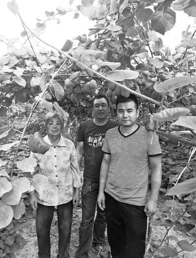 南阳返乡青年做农村电商 一天能卖近两吨猕猴桃