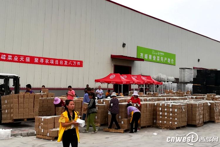 眉县猕猴桃网上销售实现开门红 首日销量超过100万斤-产地新闻-中国猕猴桃网