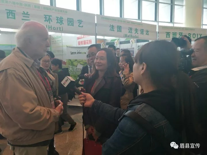 燃爆了眉县!世界猕猴桃大会暨第六届中国•陕西(眉县)猕猴桃产业发展大会盛大开幕