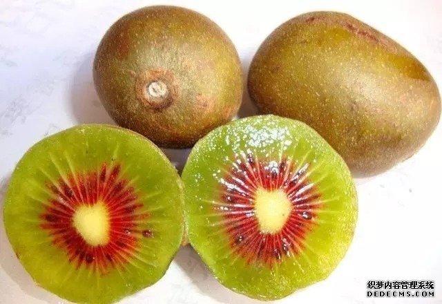 别说国产猕猴桃不好吃,只要吃过红阳猕猴桃,进口的都将是将就!