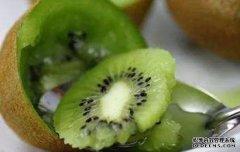 猕猴桃含糖量高吗 猕猴桃