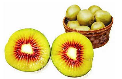红心猕猴桃是转基因吗 2017红心猕猴桃价格