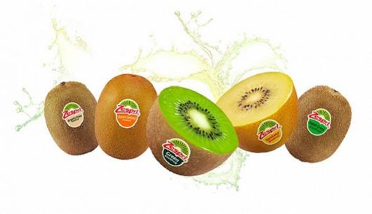 114年前猕猴桃的种子从中国被带到新西兰 成就了今天的奇异果!