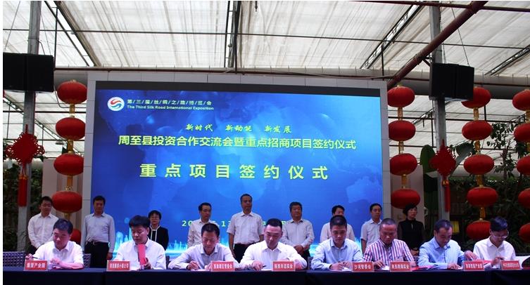 第三届丝博会周至县签约591.68亿 猕猴桃深加工获台湾企业投资