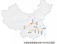 中国猕猴桃分布,徐香猕