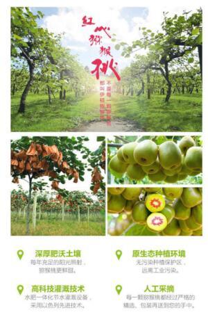 伊顿上市,澳洲资本市场迎来中国猕猴桃