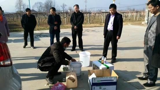 周至县农业局开展猕猴桃春季清园示范工作