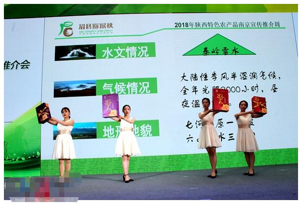 陕西眉县猕猴桃登场南京宣传周 品牌价值达98.28亿